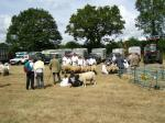 Some pictures of Chagford Show taken in 2007 and 2008